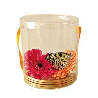Живая бабочка в прозрачной кробочке с цветами