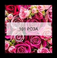 Букеты 101 роза Уппсала