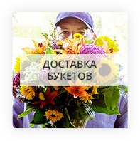 Рекомендуемые букеты из цветов по Кентербери