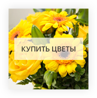 Купить цветы Сиетл